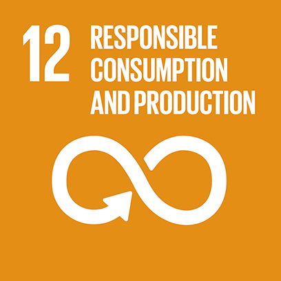Logo for the goal for responsible consumption and production