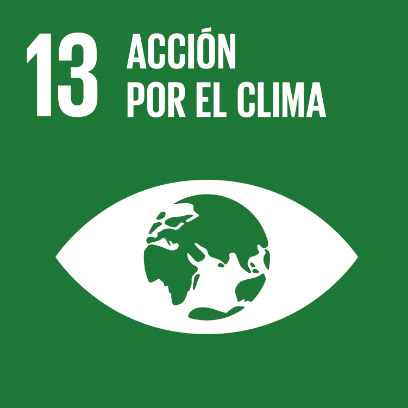 Logo de objetivo por la acción por el clima